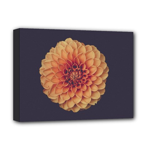 Art Beautiful Bloom Blossom Bright Deluxe Canvas 16  x 12