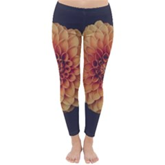 Art Beautiful Bloom Blossom Bright Classic Winter Leggings