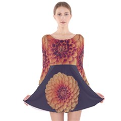 Art Beautiful Bloom Blossom Bright Long Sleeve Velvet Skater Dress