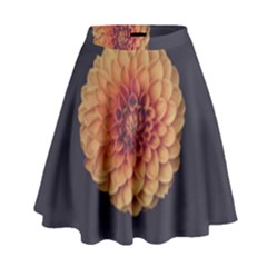 Art Beautiful Bloom Blossom Bright High Waist Skirt