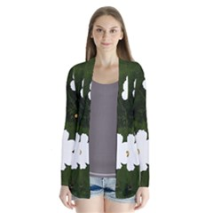 Daisies In Green Cardigans