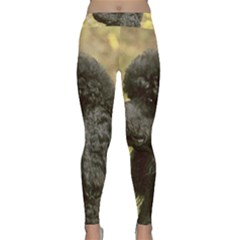 Poodle Black Classic Yoga Leggings