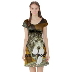 Poodle Love W Pic Silver Short Sleeve Skater Dress