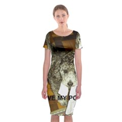Poodle Love W Pic Silver Classic Short Sleeve Midi Dress