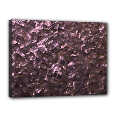 Pink Rainbow Shimmering Mother of Pearl Canvas 16  x 12