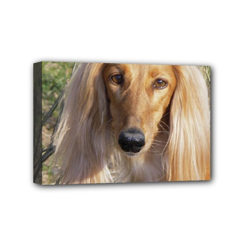 Saluki Mini Canvas 6  x 4