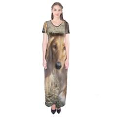 Saluki Short Sleeve Maxi Dress