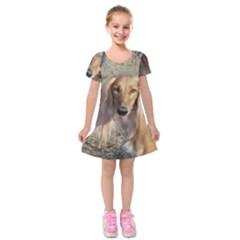 Saluki Kids  Short Sleeve Velvet Dress