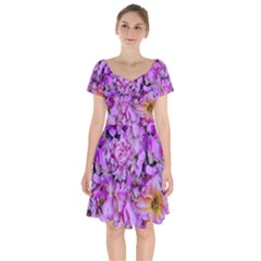 Wonderful Floral 24 Short Sleeve Bardot Dress