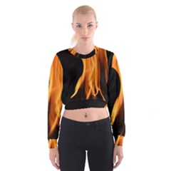 Fire Flame Pillar Of Fire Heat Cropped Sweatshirt