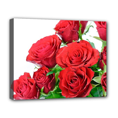A Bouquet Of Roses On A White Background Deluxe Canvas 20  X 16