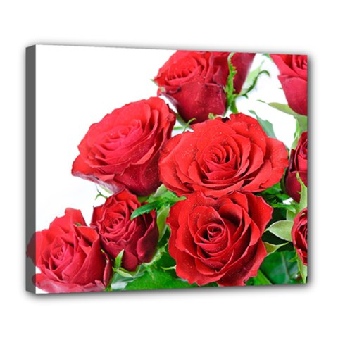 A Bouquet Of Roses On A White Background Deluxe Canvas 24  X 20