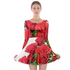 A Bouquet Of Roses On A White Background Long Sleeve Skater Dress