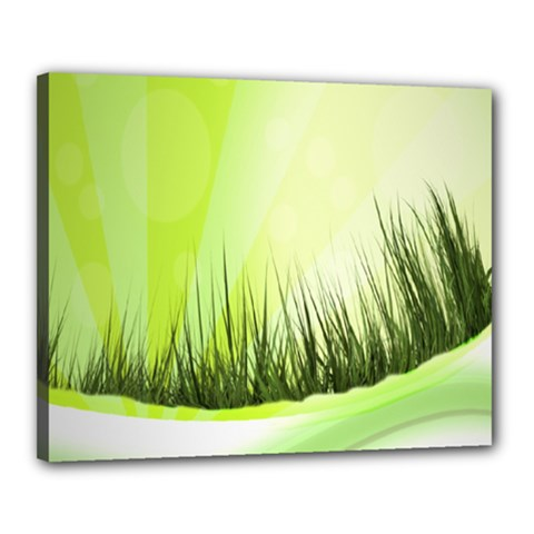 Green Background Wallpaper Texture Canvas 20  X 16