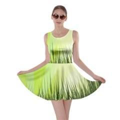 Green Background Wallpaper Texture Skater Dress