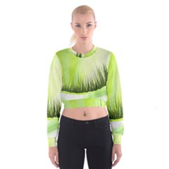 Green Background Wallpaper Texture Cropped Sweatshirt