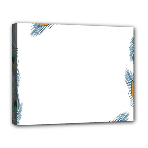 Beautiful Frame Made Up Of Blue Peacock Feathers Deluxe Canvas 20  X 16