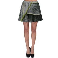 Leaf Detail Macro Of A Leaf Skater Skirt