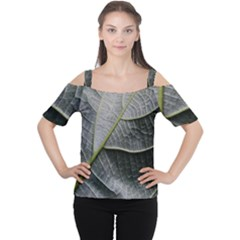 Leaf Detail Macro Of A Leaf Women s Cutout Shoulder Tee
