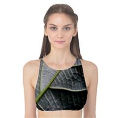 Leaf Detail Macro Of A Leaf Tank Bikini Top