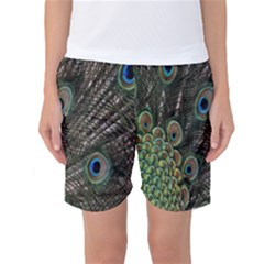 Close Up Of Peacock Feathers Women s Basketball Shorts