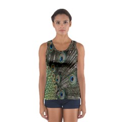 Close Up Of Peacock Feathers Women s Sport Tank Top
