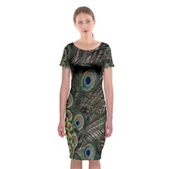 Close Up Of Peacock Feathers Classic Short Sleeve Midi Dress