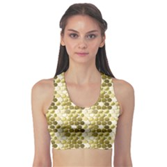 Cleopatras Gold Sports Bra