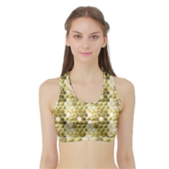 Cleopatras Gold Sports Bra With Border
