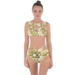 Cleopatras Gold Bandaged Up Bikini Set