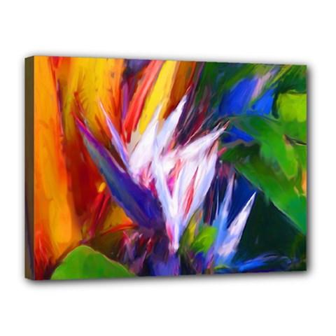 Palms02 Canvas 16  X 12