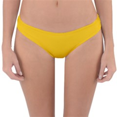 Amber Solid Color  Reversible Hipster Bikini Bottoms