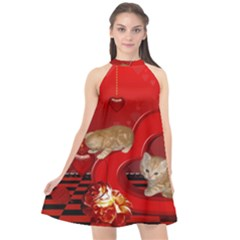 Cute, Playing Kitten With Hearts Halter Neckline Chiffon Dress