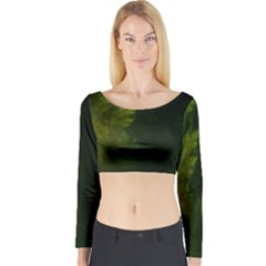 Beautiful Fractal Pines In The Misty Spring Night Long Sleeve Crop Top