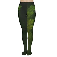 Beautiful Fractal Pines In The Misty Spring Night Women s Tights