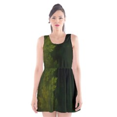 Beautiful Fractal Pines In The Misty Spring Night Scoop Neck Skater Dress
