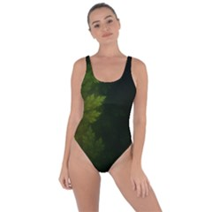 Beautiful Fractal Pines In The Misty Spring Night Bring Sexy Back Swimsuit
