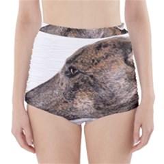 Greyhound High-Waisted Bikini Bottoms