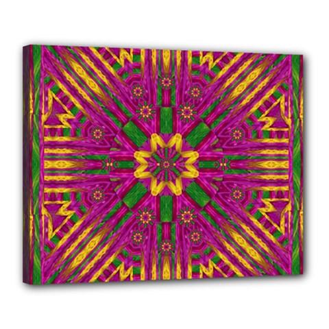 Feather Stars Mandala Pop Art Canvas 20  x 16