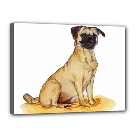 Pug Color Drawing Canvas 16  x 12