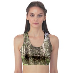 Water Tower 1 Sports Bra