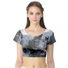 White Tail Deer 1 Short Sleeve Crop Top (Tight Fit)