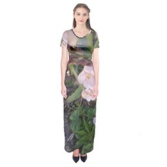 Wildflowers On The Boise River Short Sleeve Maxi Dress