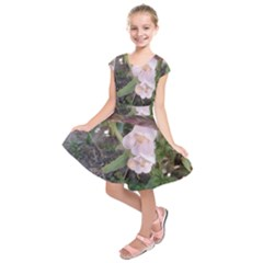 Wildflowers On The Boise River Kids  Short Sleeve Dress