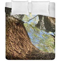 Willow Tree Reaching Skyward Duvet Cover Double Side (California King Size)