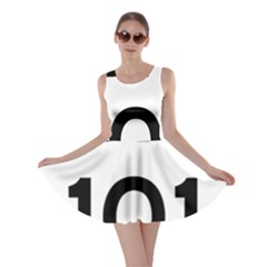 Brazil BR-101 Transcoastal Highway  Skater Dress