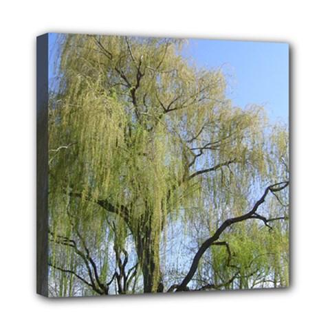 Willow Tree Mini Canvas 8  x 8