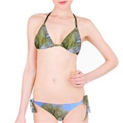 Willow Tree Bikini Set