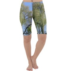 Willow Tree Cropped Leggings