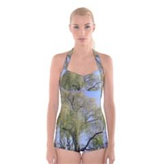 Willow Tree Boyleg Halter Swimsuit